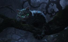 Обои Алиса в стране чедес, улыбка, чеширский кот