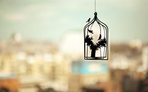 Картинка птицы, город, настроения, клетка, mood