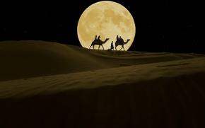 Картинка ночь, луна, пустыня, верблюды