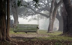 Картинка природа, парк, качели
