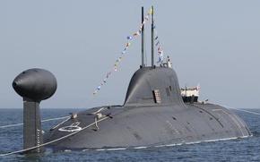Картинка праздник, ВМФ, России, АПЛ, построение, рейд, Нерпа