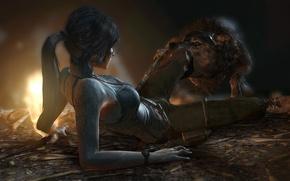 Обои волк, хищник, зубы, укус, Tomb Raider, лара крофт, Lara Croft