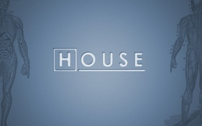 Обои House, Хаус, M.D., телесериал