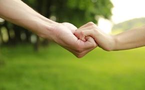 Картинка деревья, дети, зеленый, фон, widescreen, обои, настроения, ребенок, защита, мальчик, руки, отец, опора, девочка, wallpaper, ...