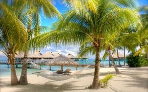 Обои море, пальмы, бунгало, пляж, гамак, песок