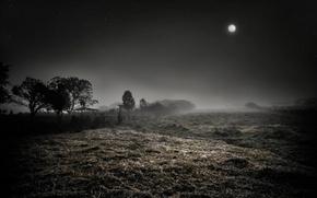Картинка ночь, туман, луна, звёзды
