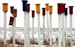 Картинка снег, цветные, палки, скворечники