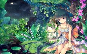Картинка ночь, природа, ручей, луна, звёзды, аниме, арт, девочка, ландыш, клетка цветы