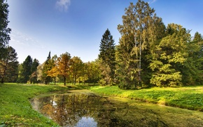 Картинка осень, небо, трава, листья, солнце, деревья, пруд, парк, Санкт-Петербург, Россия, Павловск