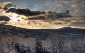 Обои зима, лес, небо, солнце