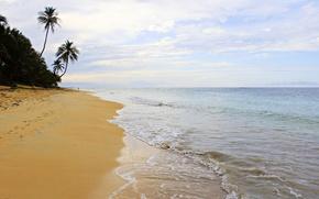 Картинка пальмы, прибой, доминиканская республика, океан, Доминикана, песок