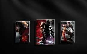 Картинка игры, текстуры, Ninja Gaiden3