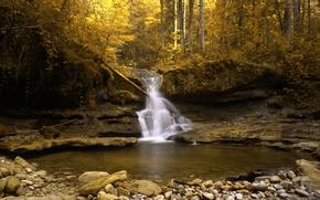 Обои швейцария, золото, осень, поток