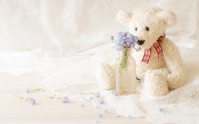 Картинка цветы, игрушка, бутылка, медведь, букетик, незабудки, тюль, плюшевый мишка