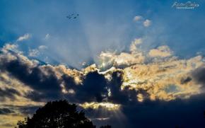 Картинка sky, nature, sunset, clouds