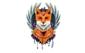 Картинка минимализм, перья, лиса, лис, fox