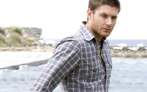 Обои supernatural, Дженсен, Эклз, сверхъестественное, актер