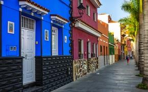 Картинка пальмы, улица, дома, Испания, Puerto de la Cruz