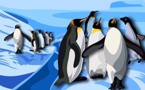 Обои рисунок, антарктида, птицы, пингвины
