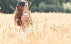 Картинка поле, лето, девушка, профиль, колосья, Delaia Gonzalez