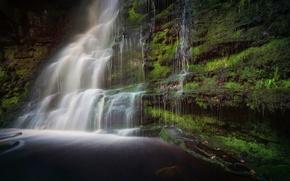 Картинка зелень, вода, камни, водопад, мох, поток