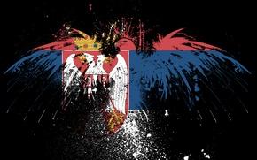 Обои орел, флаг, братья, сербия, Србија, serbian flag, serbia, сербский флаг