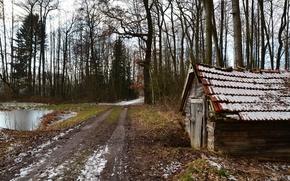 Картинка дорога, лес, дом