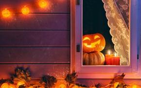 Обои pumpkin, осень, ночь, Хеллоуин, тыква, Halloween, autumn, candle, окно, Holidays