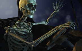 Картинка skull, pose, bones, sitting