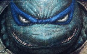 Картинка TMNT, Leonardo, Wallpaper