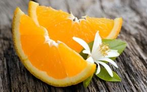 Картинка цветок, фон, обои, апельсин, еда, апельсины, листик, wallpaper, широкоформатные, background, дольки, полноэкранные, HD wallpapers, цветочек, …