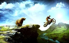 Обои птицы, горы, мотоциклист, медведь, пейзаш