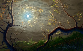 Картинка трава, листья, деревья, ветки, ветви, арт, кривые