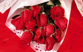 Обои цветы, яркие, розы, букет, красные