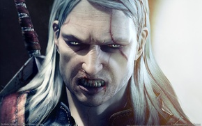 Картинка the witcher, game, witcher, enhanced edition