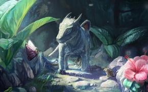 Картинка лес, камни, птица, дракон, лягушка, фея, фэнтези, арт, дракончик, детеныш, тропинка