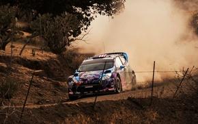 Картинка Ford, Авто, Пыль, Спорт, Гонка, WRC, Ken Block, Rally, Fiesta