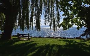 Картинка озеро, дерево, Швейцария, скамейки, Switzerland, Canton of Vaud, Vaud