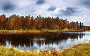 Картинка осень, лес, отражения, деревья, озеро, Природа, forest, trees, landscape, nature, autumn, lake, scenery, fall