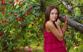 Картинка девушка, модель, сад, яблоня, Zlatka A