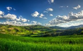 Картинка summer, grass, cloud, tree, hills
