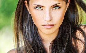 Картинка Girl, green eyes, photo, beauty, lips, face, brunette, look, portrait, freckles, intense look