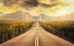 Картинка птицы, горы, поле, Дорога, обработка, пейзаж, облака