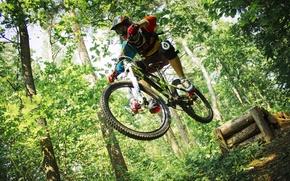 Картинка лес, велосипед, forest, райдер, fox, drop, подвеска, даунхилл, двухподвес, дроп, full suspension, ns bike, rockshox