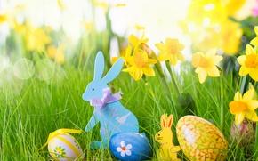 Картинка яйца, Пасха, пасхальные яйца, easter, happy easter