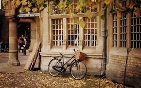 Картинка осень, листья, деревья, природа, велосипед, дом, фон, люди, widescreen, обои, корзина, окна, желтые, колесо, wallpaper, …