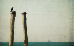Картинка море, стиль, фон, птица
