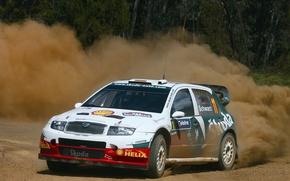 Картинка пыль, поворот, rally, wrc, Skoda, fabia