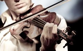 Картинка музыка, скрипка, игра