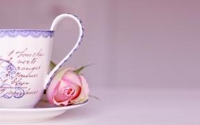 Картинка цветок, надписи, фон, розовый, роза, чашка, слова, блюдце
